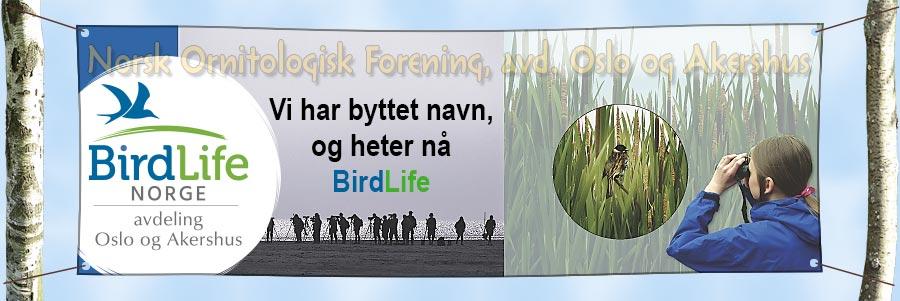 NOF OA-banner